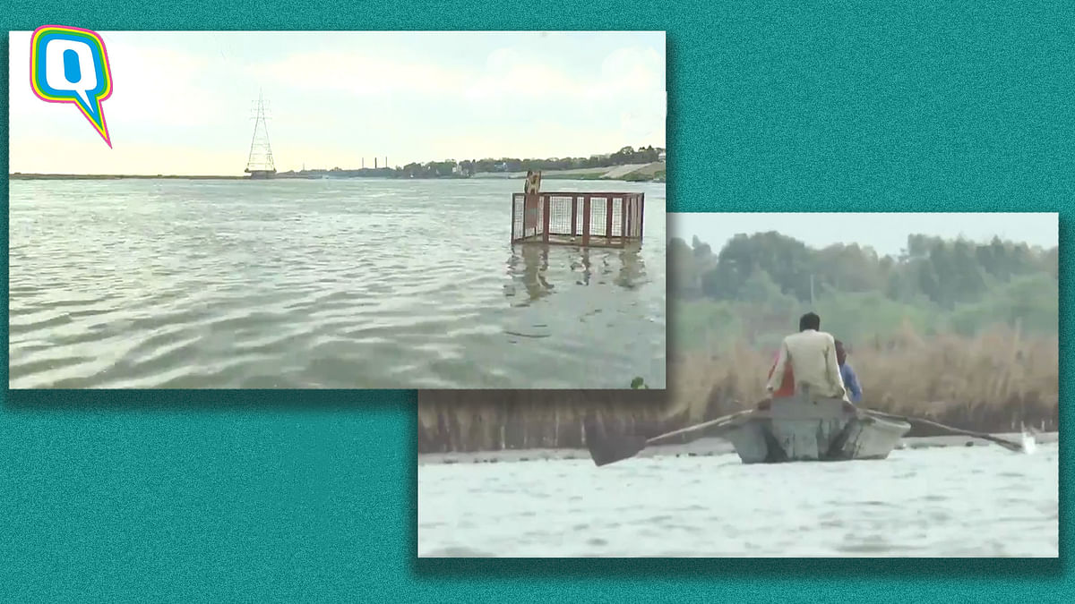 Netizens Overjoyed as Ganga's Water Quality Improves Amid Lockdown