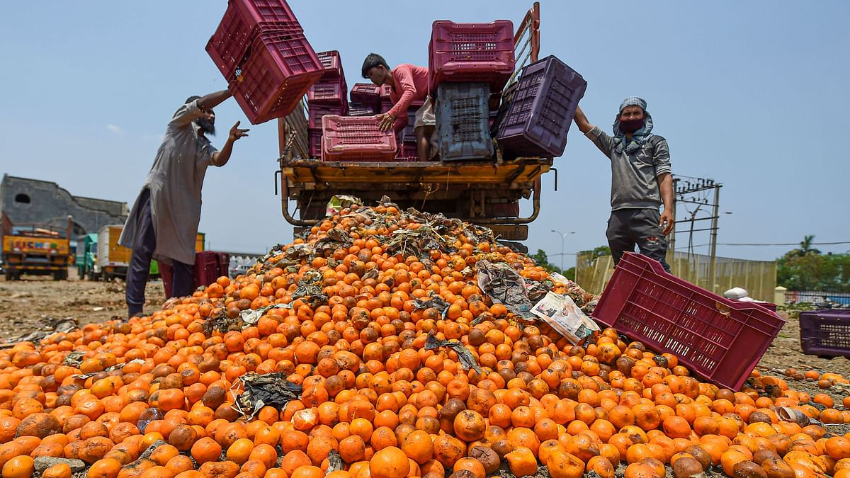 Workers dump rotten oranges near Koyambedu fruit market during the nationwide lockdown, imposed as a preventive measure against the coronavirus pandemic, in Chennai, 27 April.