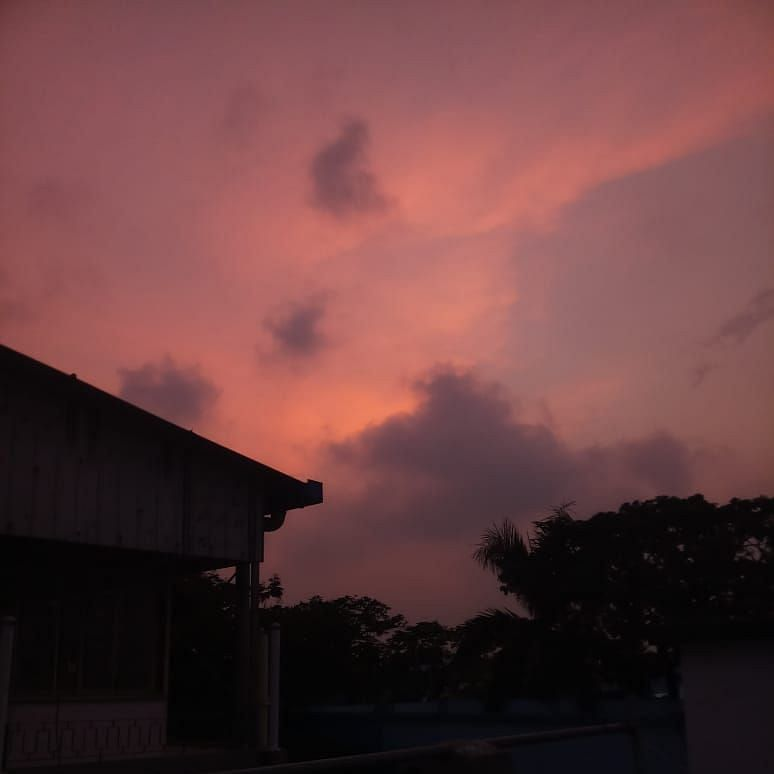 The Purple Hour