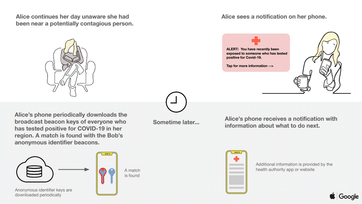 How the contact tracing will alert users on their phone.