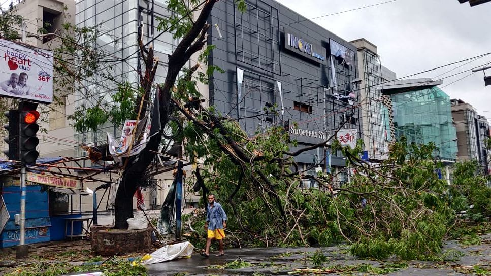 Cyclone Amphan: 72 Dead in WB; Trees Uprooted, Buildings Damaged