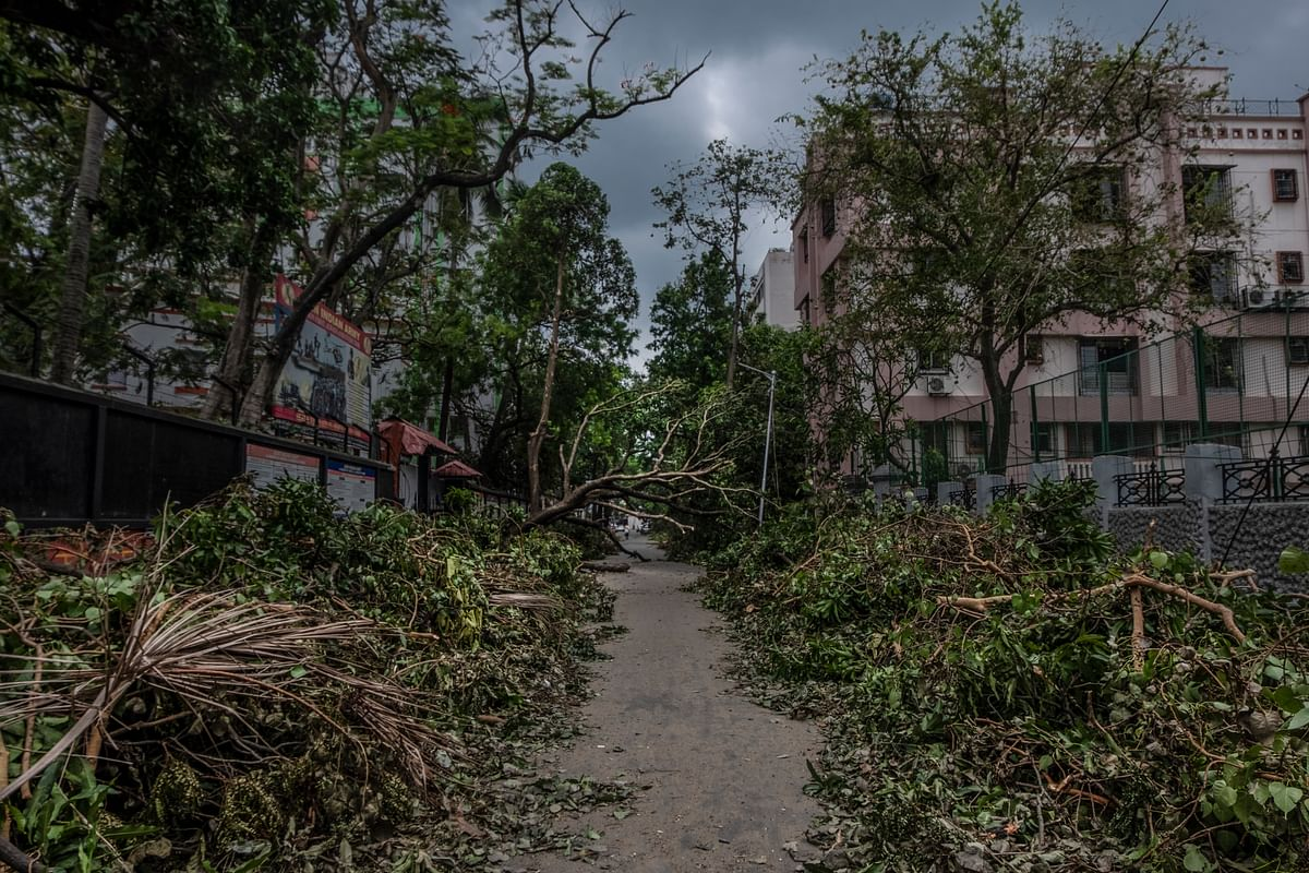 On 21 May morning, the cyclone left trail of destruction – fallen electric poles, uprooted trees, waterlogged streets etc.