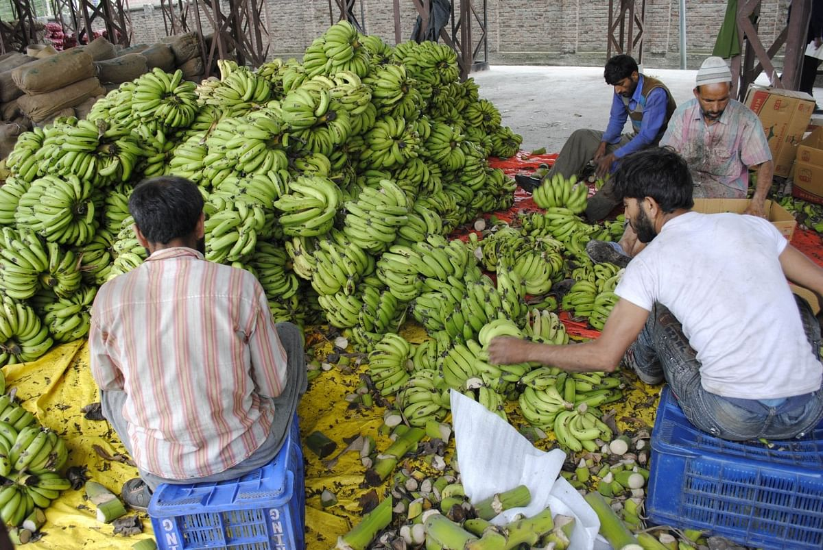 Srinagar city's largest fruit and vegetable market in Parimpora, where a COVID-19 patient spent four days before being tested positive.
