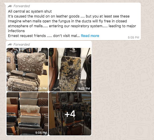 Fungus on Leather Goods in Malaysian Mall Claimed to Be From India