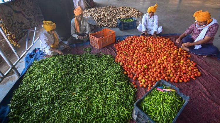 Agri Reforms Necessary Or Futile for Farmers? Experts Weight In