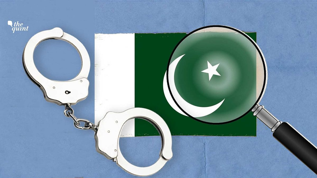 With Pakistan still on the FATF's grey list, the involvement of its diplomats in illegal activities reflects badly on the nation. Image of Pakistan flag used for representational purposes.