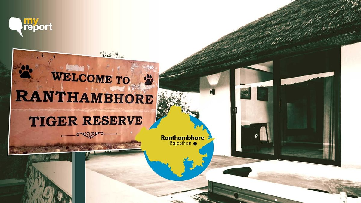 Ranthambore Readies for Seasonal Shutdown, Hoteliers Under Stress