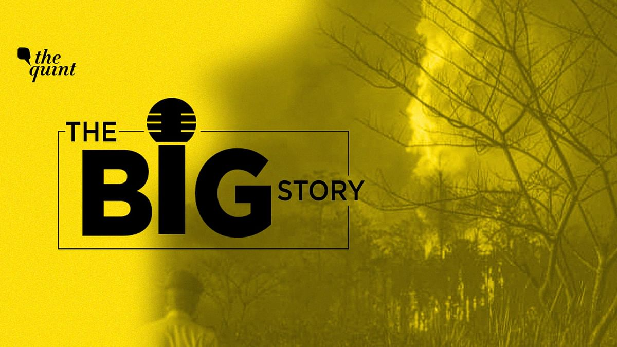 How a 14-Day Gas Leak Wreaked Ecological Havoc in Assam's Baghjan