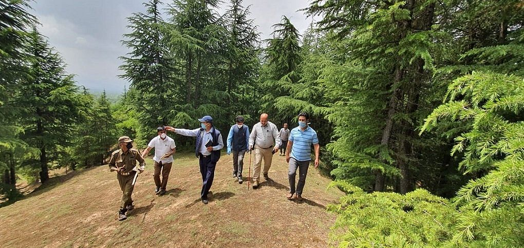 Kashmir's Chief Conservator of Forests, Farooq Gillani, conducts inspection of South Kashmir forests after many complaints of timber smuggling