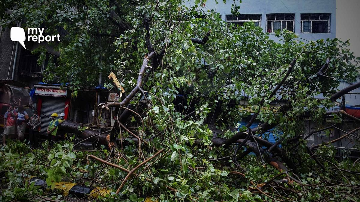 'I'm 14 Years Old and Here's My Experience of Cyclone Nisarga'