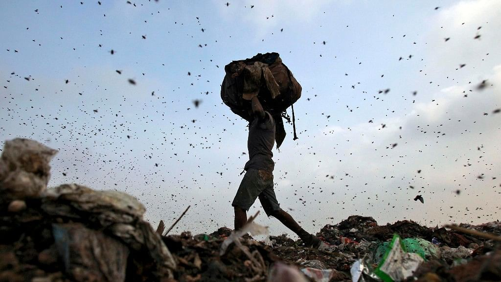 File photo of a ragpicker surrounded by flies in Mumbai. Image used for representational purposes.