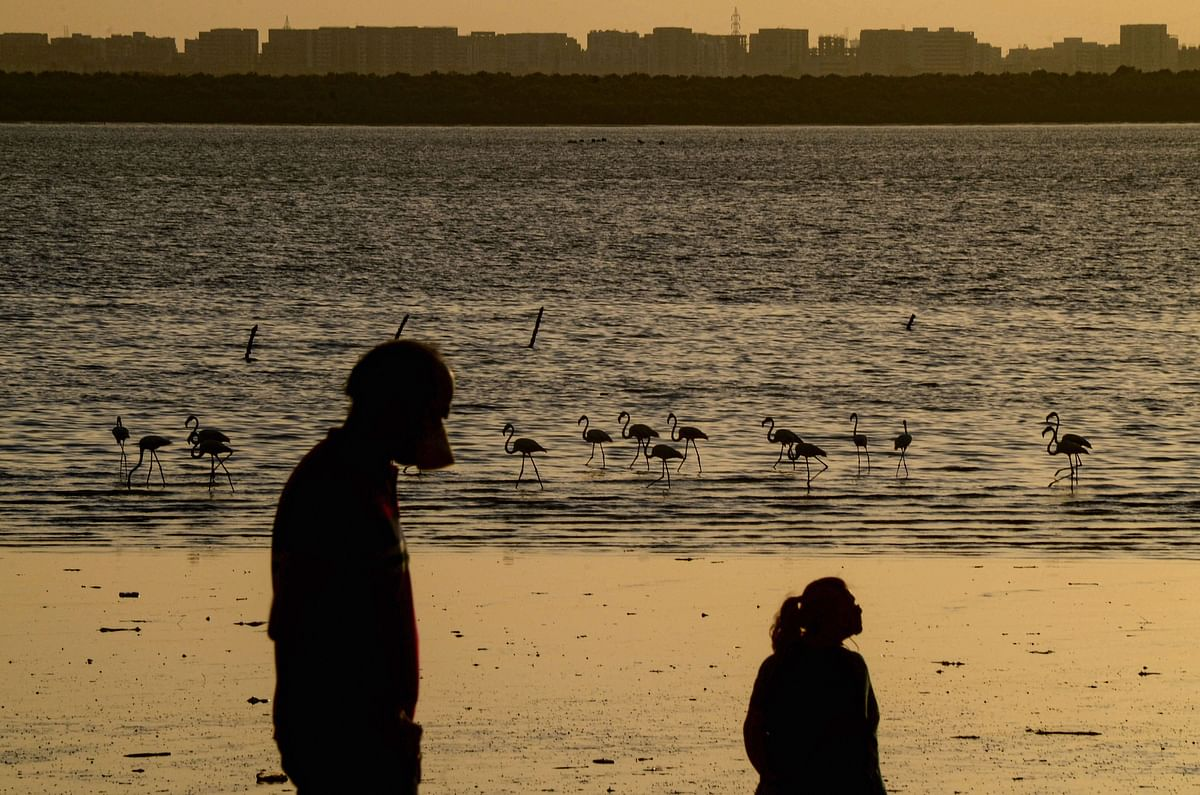 People during sunset as flamingoes are seen in Sagar Vihar Water Front, during the ongoing COVID-19 lockdown, at Vashi in Navi Mumbai.