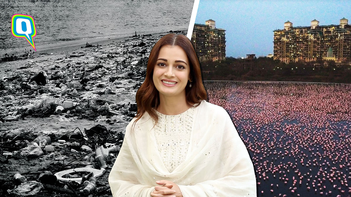 The Earth Doesn't Deserve Our Old 'Normal': Dia Mirza