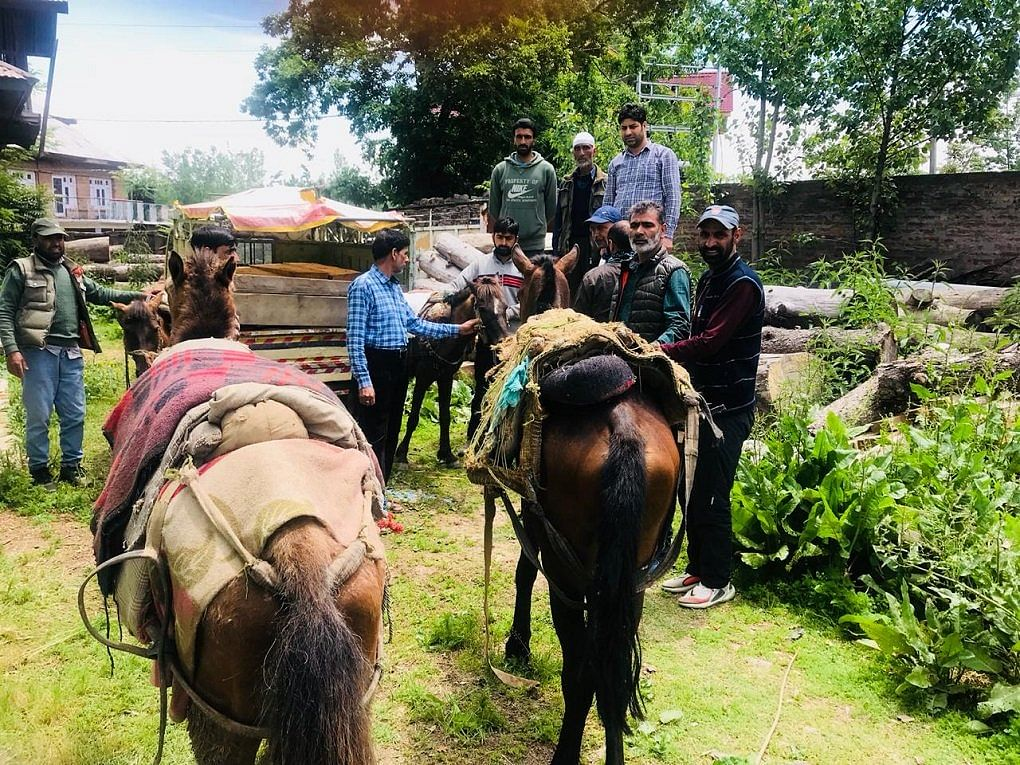 Illicit timber along with vehicles and forces seized by the Forest department of Central Circle at Doodhganga range, Pir Panjal Division Budgam.