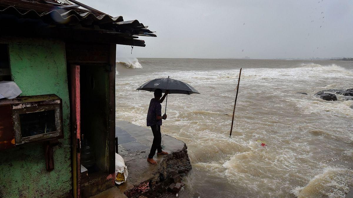 Trees Uprooted, Roofs Blown Away: Cyclone Nisarga Hits Maharashtra