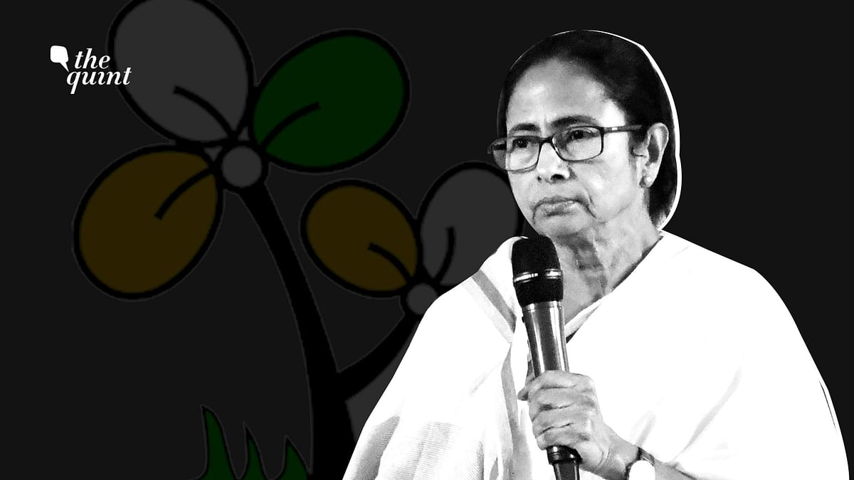 'Deadwood', Youth, Caste: Decoding TMC's New Look Before 2021