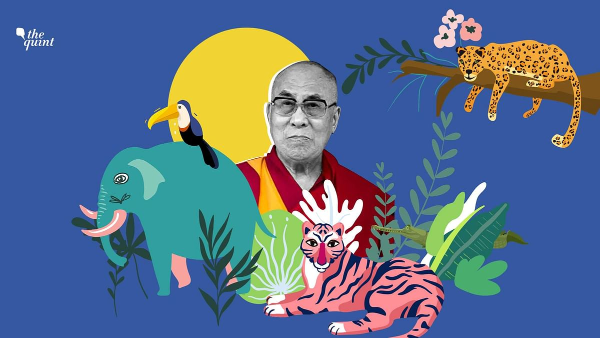 The focus of the Dalai Lama's colossal endeavors extends from the cause of the Tibetan freedom struggle to universal ethics to bridging the gap between science and religion.
