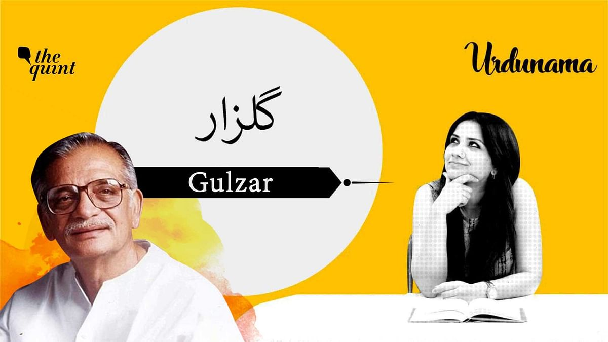 Gulzar: Celebrating the Artist And His Cocktail of Words