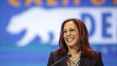 The 2020 Democratic presidential ticket made history, making Harris the first Black woman and the first Indian American on a major party presidential ticket.