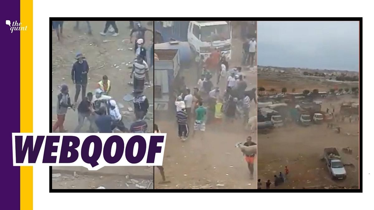 A video showing loot and violence at a sheep-goat market has gone viral on social media.