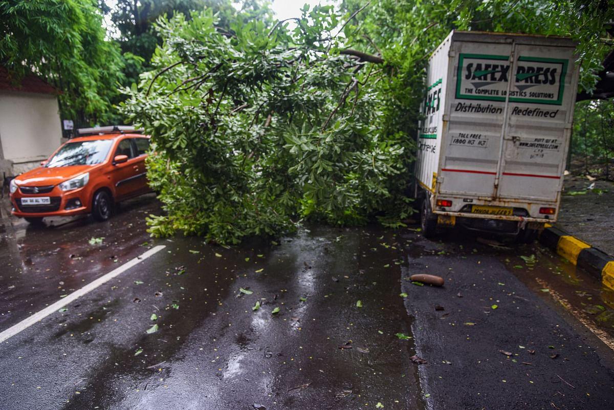 A tree falls on a truck amid strong winds in Kopar Khairane, Navi Mumbai.