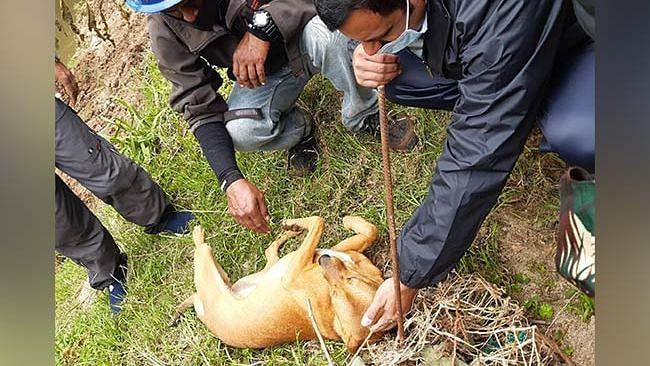 Kerala Cop Adopts Dog That Found Child's Body in Idukki Landslide