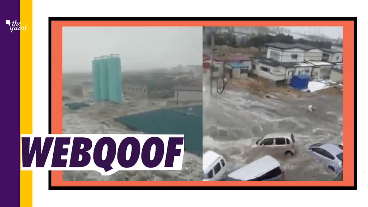 Viral Video of Tsunami in Japan Falsely Shared as Floods in China