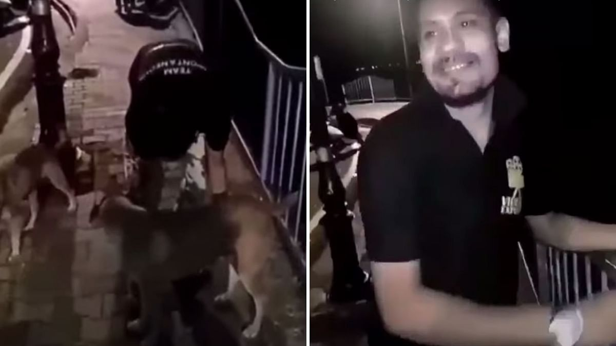 "In the video, that has since sparked outrage on the internet, a man can be seen picking up a dog, and hurling it into the river, with the Hindi-movie song ""Tera Baap Aaya"" playing in the background."