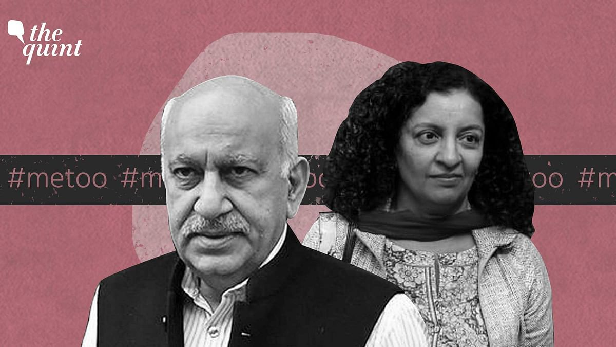 MJ Akbar's Reputation Most Important for Him: Lawyer Geeta Luthra