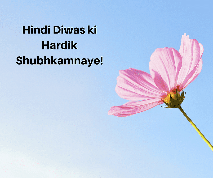 Hindi Diwas 2020: Quotes, Wishes, Images & Greetings