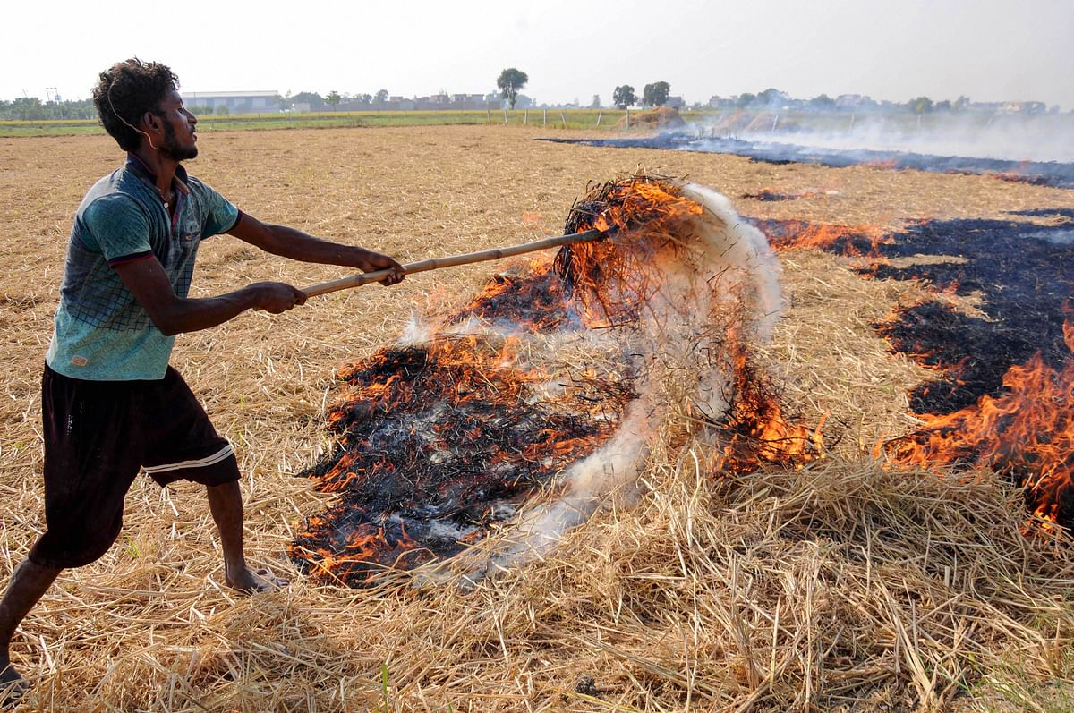 A farmer burns paddy stubble at a farm on the outskirts of Amritsar, Friday, 25 September 2020. The pollution and smokey haze around the adjoining states of Punjab and Haryana, especially New Delhi has been linked with stubble burning and is said to be a contributing factor for increasing air pollution.
