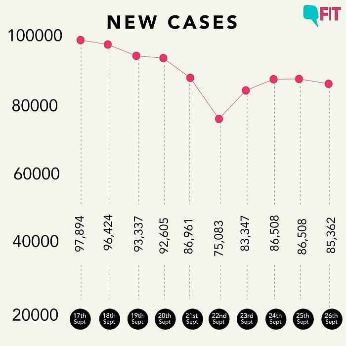 Figure 1: Daily cases in the last 24 hours