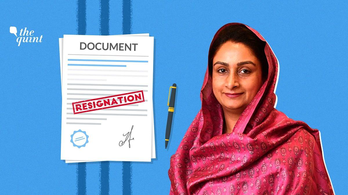 Harsimrat Kaur Resigns Over Farm Bills: Will Akali Dal Quit NDA?
