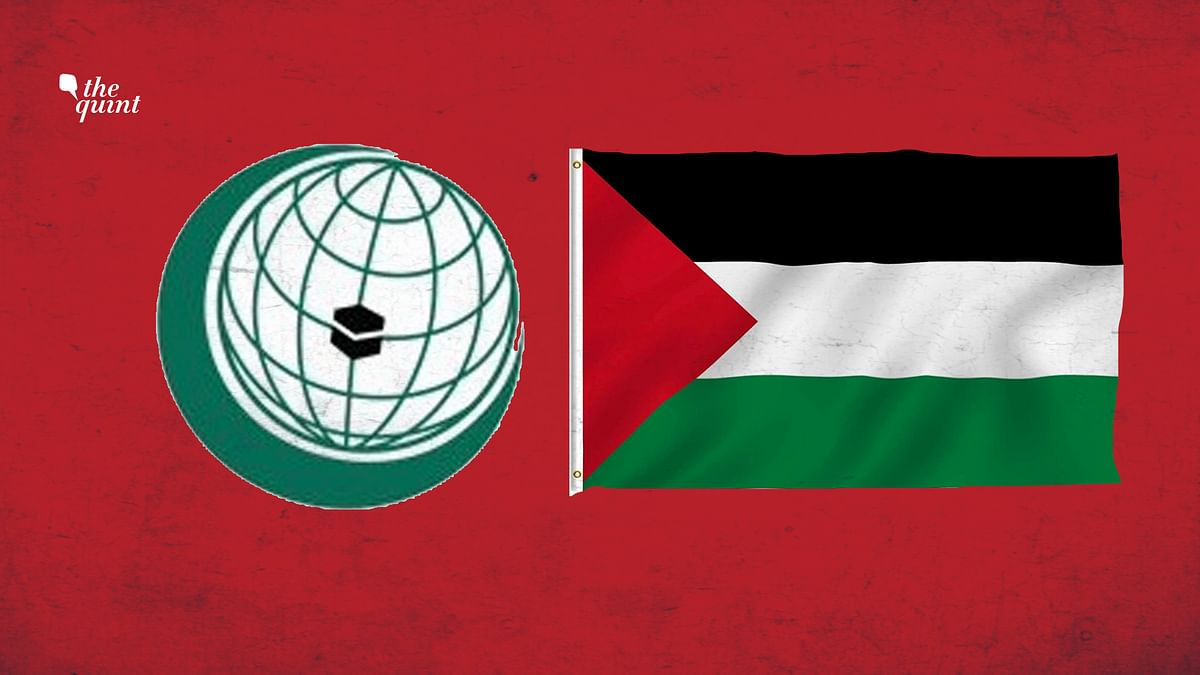 Image of OIC logo (L) and Palestine flag used for representational purposes.