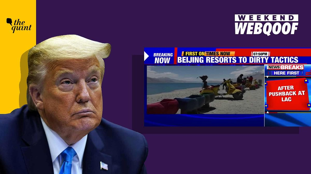 WebQoof Recap: From Times Now's Pangong Tso Gaffe to Trump on Jobs
