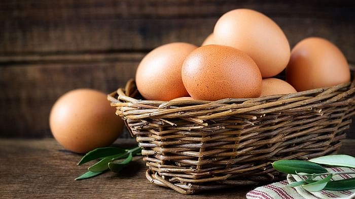 Image of eggs used for representational purpose.