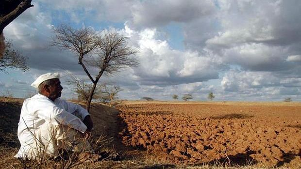 After Migrant Deaths, Govt Says No Data on Farmer Suicides