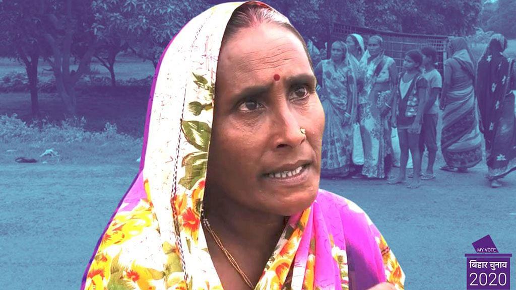 Bihar Polls 2020: No Money for Fodder, Women Walk 20 km