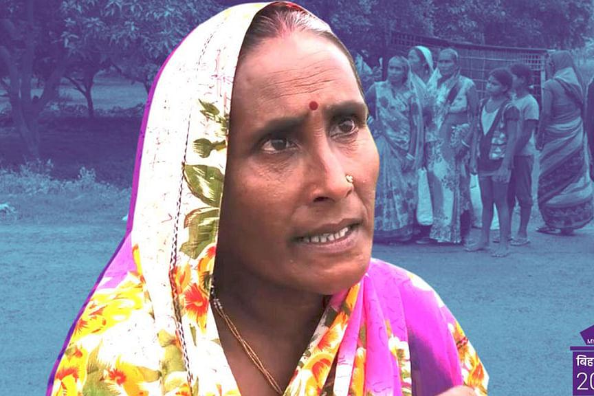 Bihar Polls 2020: No Money for Fodder, Women Walk 20 kms for Grass