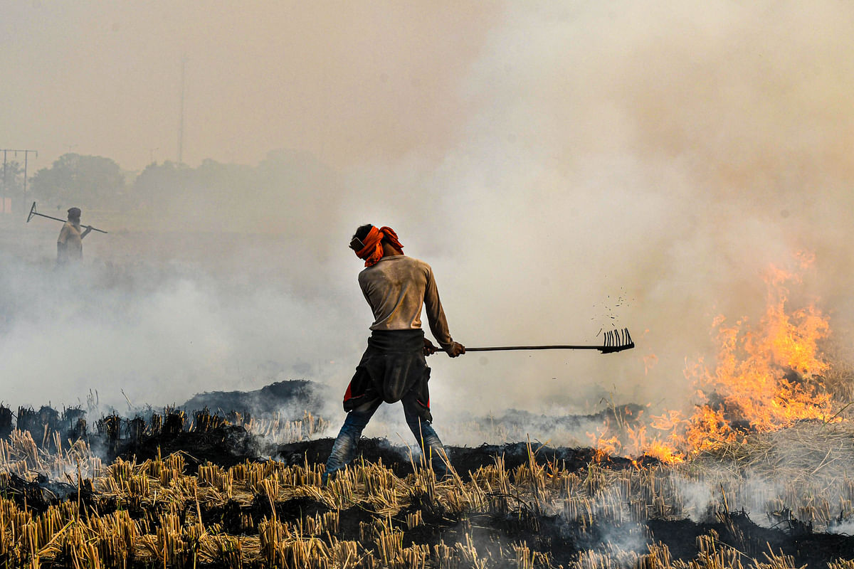 A farmer burns paddy stubble in a field, in Chandigarh, Friday, 30 October.
