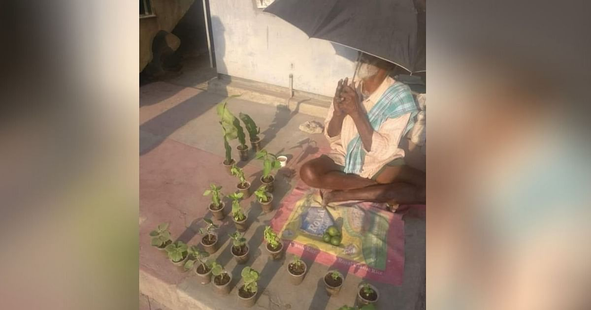 Twitter Urges People to Buy Saplings From This Bengaluru Man