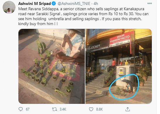 Bengaluru Man Gets Customers at His Plant Shop After Viral Tweet