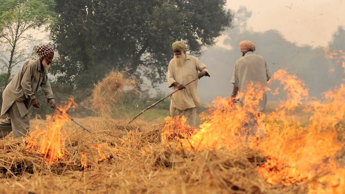 Farm Fires: SC Stays Lokur Panel After Centre Says Will Bring Law