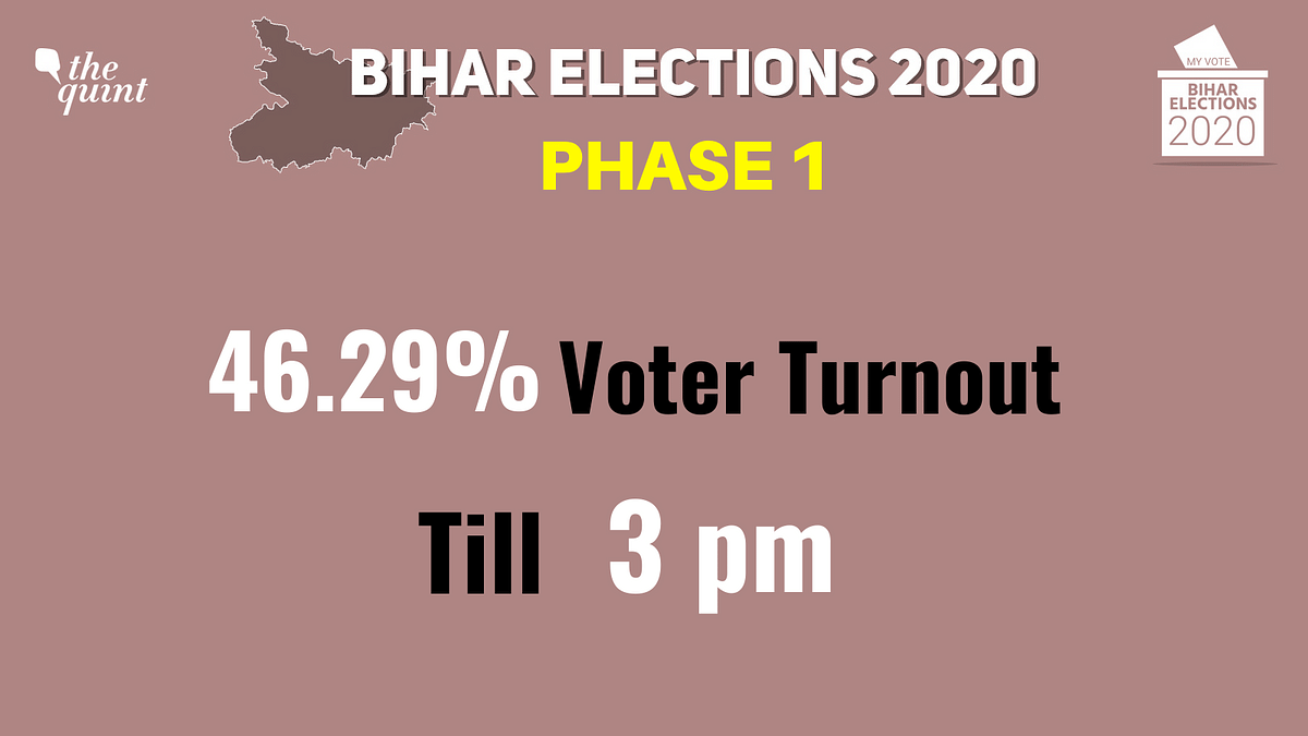 Bihar Assembly Election: 53.54% Voter Turnout Recorded Till 6 pm
