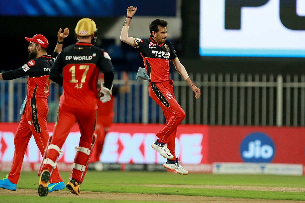 Yuzvendra Chahal of Royal Challengers Bangalore celebrates after taking the wicket of KKR captain Dinesh Karthik
