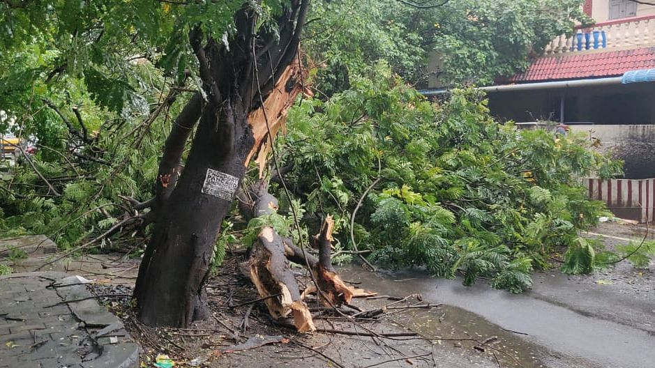 Cyclone Nivar: PM Modi Assures Complete Support to TN, Puducherry