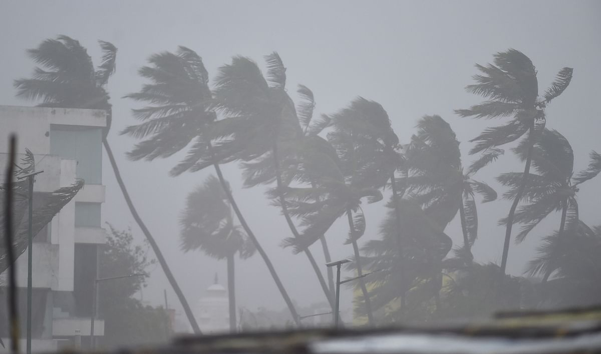 3 Killed in Cyclone Nivar, Storm Weakens But Rains Continue