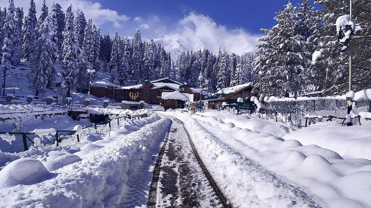 In Photos: Season's First Snowfall in Kashmir