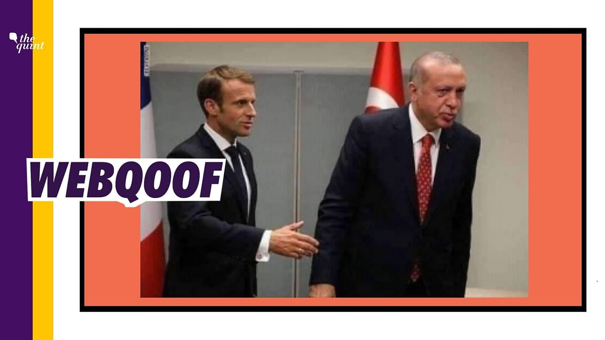 Old Pic Used to Claim Erdogan Refused to Shake Hands With  Macron