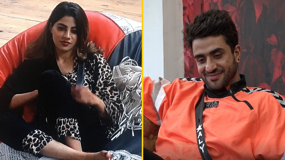 'Bigg Boss' 14: This Is What Nikki Would Say if Aly Proposes